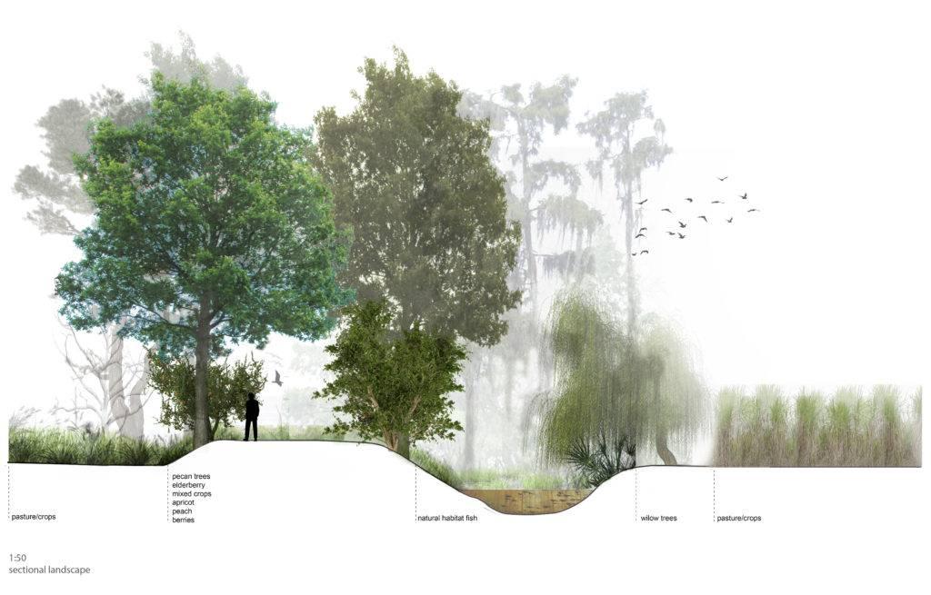 3D impressie van een ontwerp van een landschapsarchitect